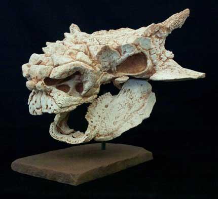minot-skull_fs